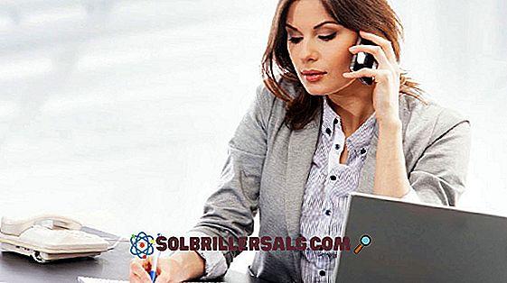 سكرتير تنفيذي: الملف الشخصي والمهارات والوظائف اللازمة