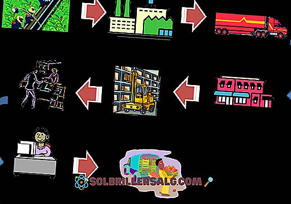 Logistikkosten: Was sie sind, was sie sind und Beispiele