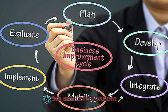 Анализ на длъжностите: етапи, методи, значение, цели и пример