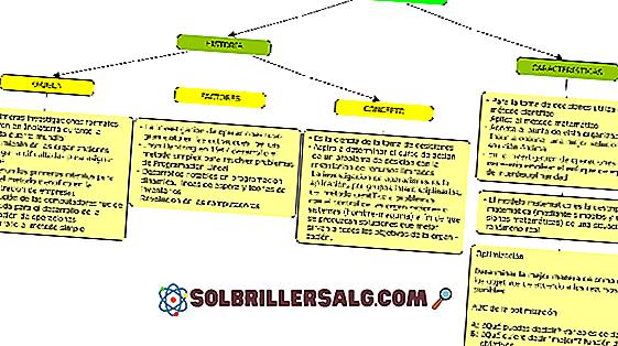 Obiettivi di un'azienda: tipi e loro caratteristiche