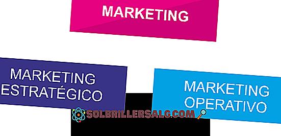 تسويق الخدمة: الخصائص والاستراتيجيات والأهمية والأمثلة