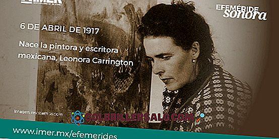 Леонора Карингтън: биография, приноси и творби