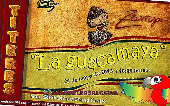 Танцът на Guacamayas: произход и характеристики