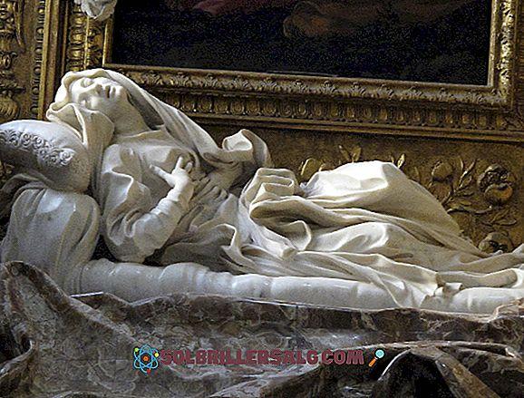 الباروك: التاريخ والخصائص والفن (الهندسة المعمارية والرسم والنحت ...)