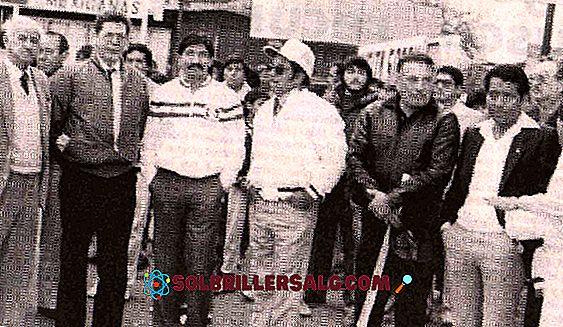 ชีวประวัติของบุคคลในประวัติศาสตร์ - Raúl Salinas Lozano: ชีวประวัติ