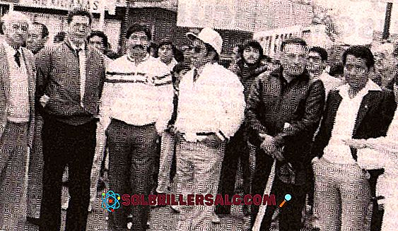 Раул Салинас Лозано: биография