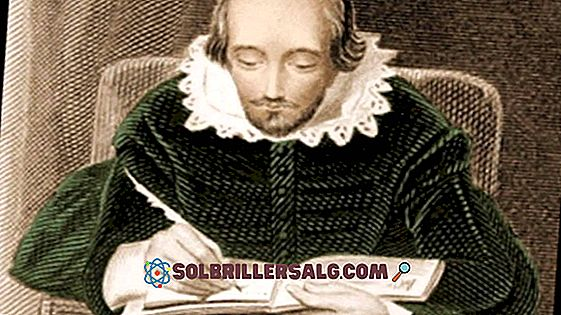 William Shakespeare: biografi, sjangre og stil