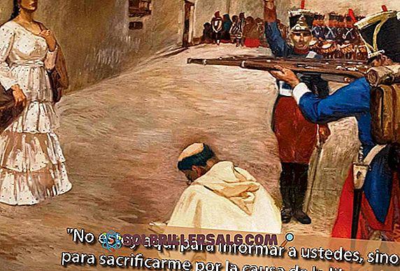 ชีวประวัติของบุคคลในประวัติศาสตร์ - María Parado de Bellido: ประวัติและสิ่งที่เป็นการกระทำที่กล้าหาญ