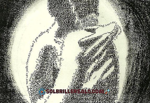 Mariano Azuela: biografi, stil, verk og setninger