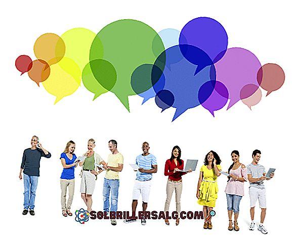 Гили: характеристики, функции, видове и значение
