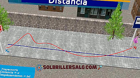 Quelle est la différence entre trajectoire et déplacement?