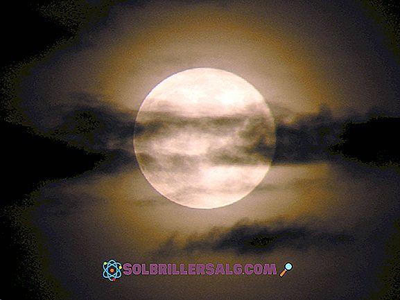 Влияние на Луната върху физическите, биологичните и човешките явления