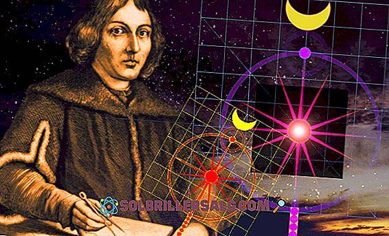 Nicolás Copernicus: Biografie und Beiträge zur Wissenschaft