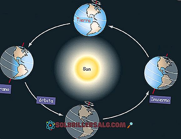 ما هي حركات القمر والأرض؟