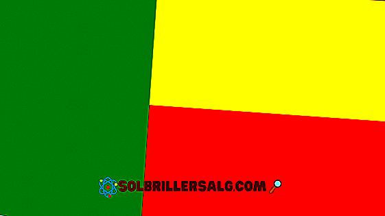 Flaga Algierii: historia i znaczenie