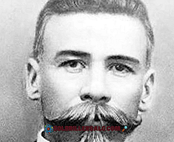 Belisario Domínguez Palencia: biyografi