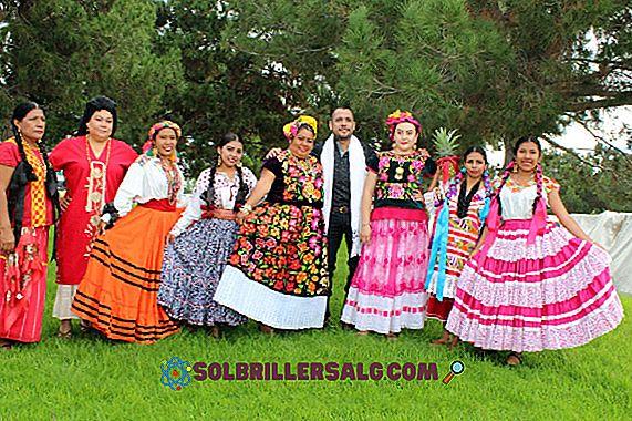 Какво представлява Oaxaca?