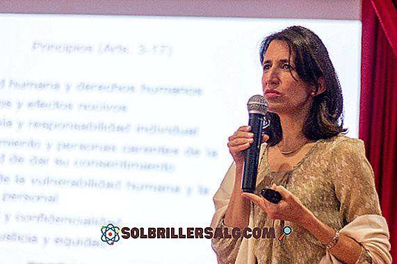 Apa itu Hak Asasi Manusia di Kolombia?