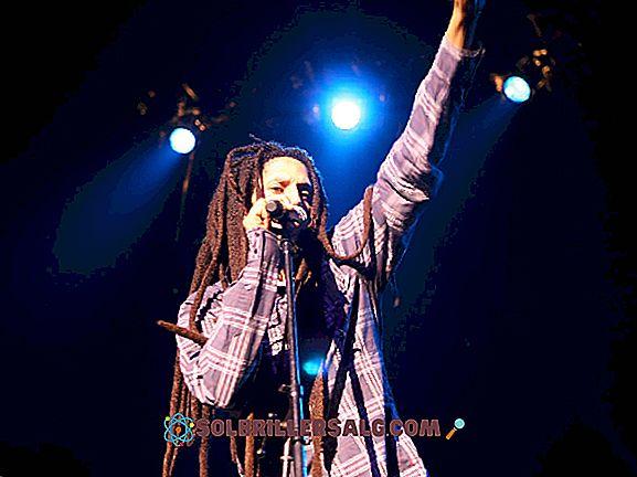 De 30 bästa Reggae-band och deras stora solister