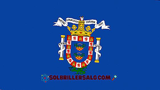 Flagge von Chile: Geschichte und Bedeutung