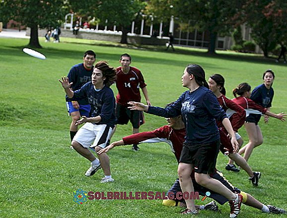 Quali sono le differenze tra educazione fisica e sport?