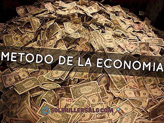 Qual è il metodo di studio dell'economia?
