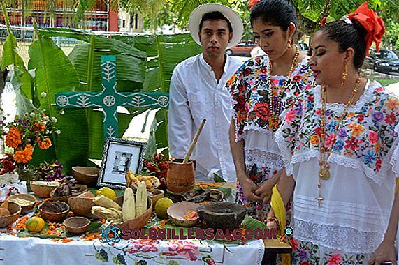 Yucatán: najbardziej istotne cechy