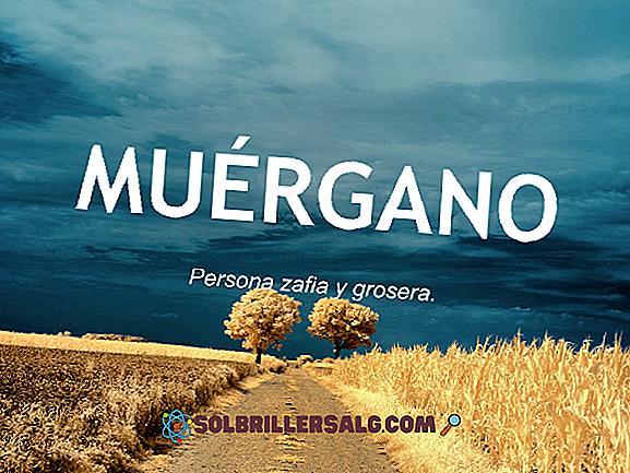20 คำใน Mazateco และความหมายในภาษาสเปน