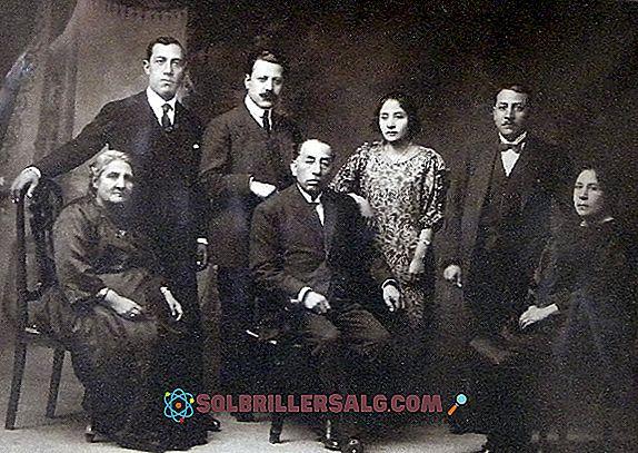 Stemma di Cajamarca: Storia e significato