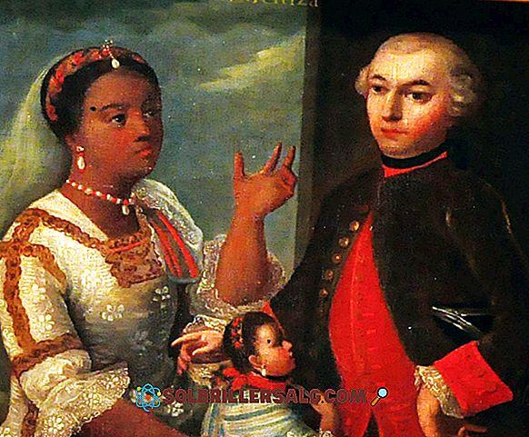 Mestizaje في المكسيك: الأصل والخصائص والتبادل الثقافي والفني