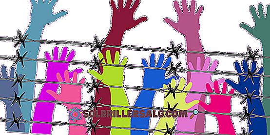 أهمية حقوق الإنسان 10 أسباب أساسية 2021