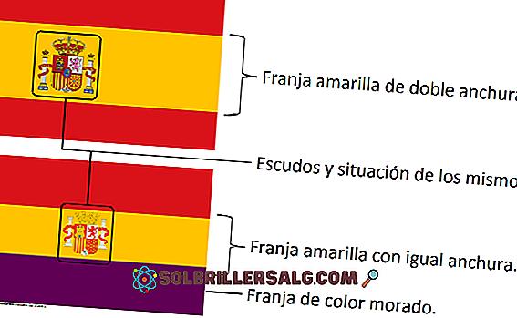 Steagul din Granada: istorie și semnificație