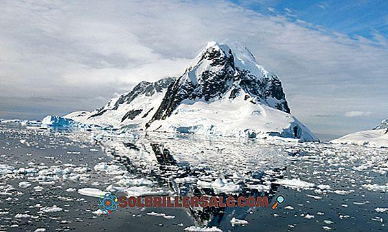 À quelle période les glaciations se sont-elles terminées?