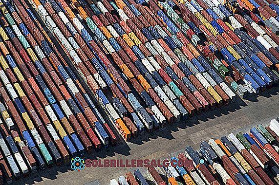Commerce interne: caractéristiques et revitalisation