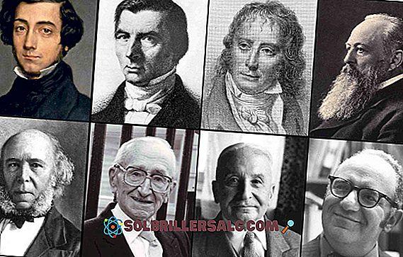 الليبرالية الاجتماعية: الأصل ، الخصائص ، الممثلون