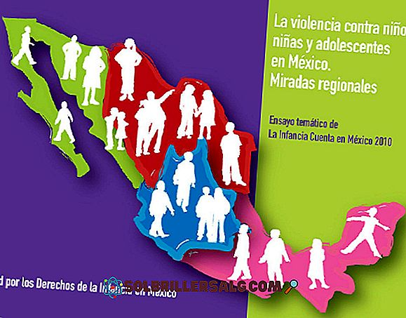 المؤسسات الخمس التي تحمي حقوق الإنسان في المكسيك