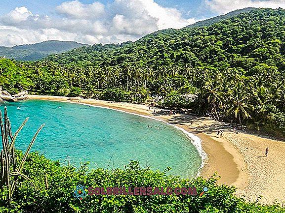 Какви отдели съставляват Карибския регион на Колумбия?