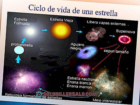 على ماذا يعتمد لون النجوم؟