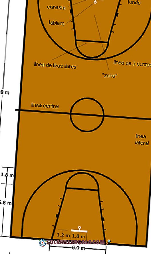 Nervu Smarzigs Atri ملعب كرة الطائرة وقياساته Woodcrestgolf Com