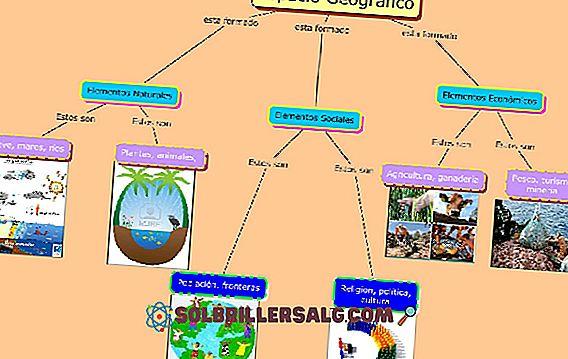 Културно многообразие на Веракруз: 5 примера
