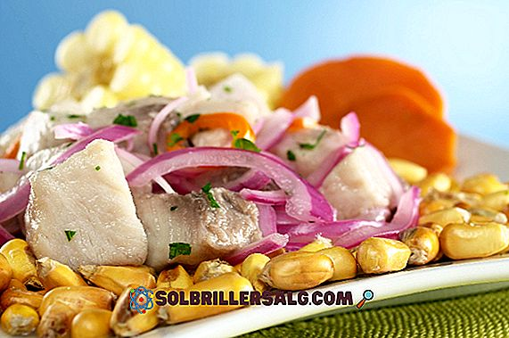 De 10 mest populära peruvianska kustens typiska livsmedel