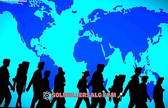 Les 17 principaux types de migration