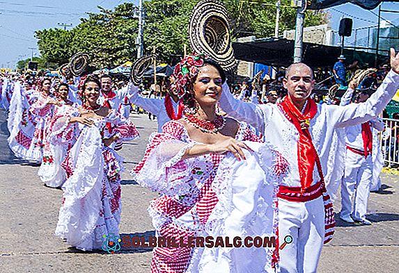 5 Musikkinstrumenter av Det Insulære Regionen i Colombia