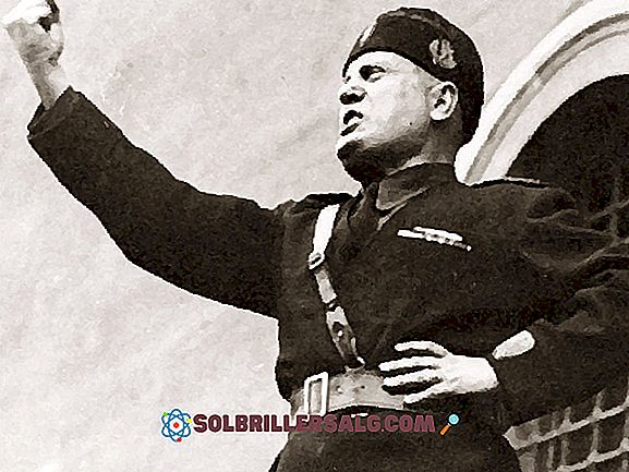 Benito Mussolini: Biografia