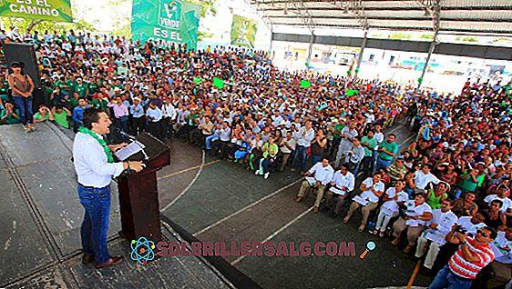 Vilka är de politiska delarna av Chiapas?