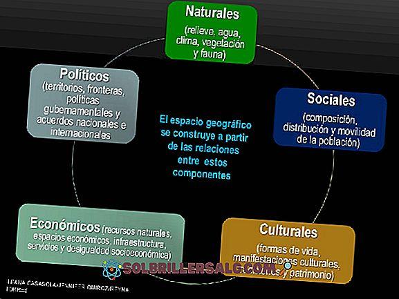 Социалните, политическите и икономическите компоненти на Сонора