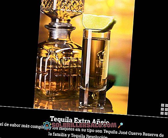 I 5 tipi di tequila più consumati