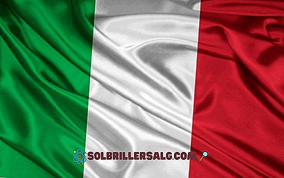 علم إيطاليا: التاريخ والمعنى
