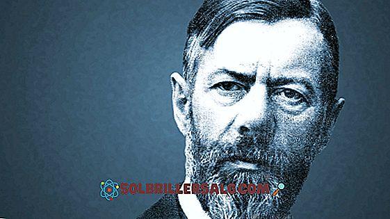 Max Weber: ชีวประวัติความคิดและการมีส่วนร่วม