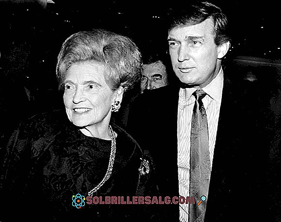 Mary Anne MacLeod Trump: biografia